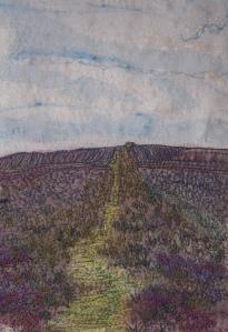 Moel Famau Path